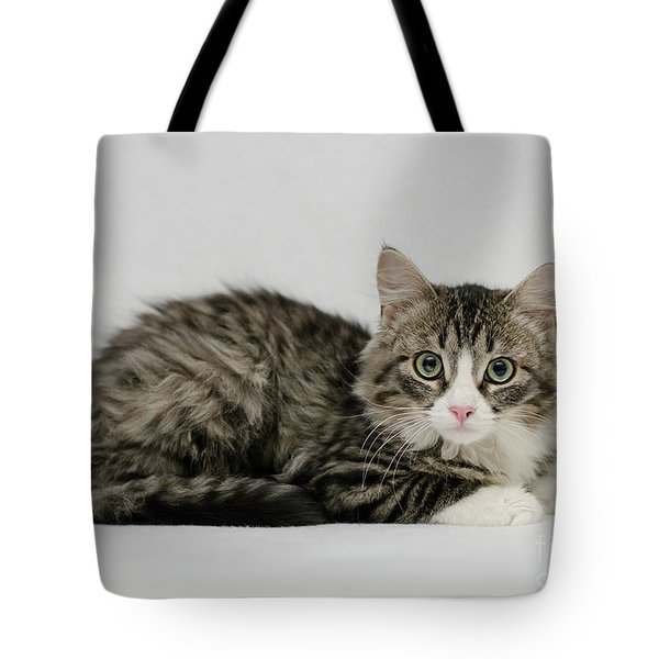 Tote Bag featuring the photograph Ms. Alexia by Irina ArchAngelSkaya