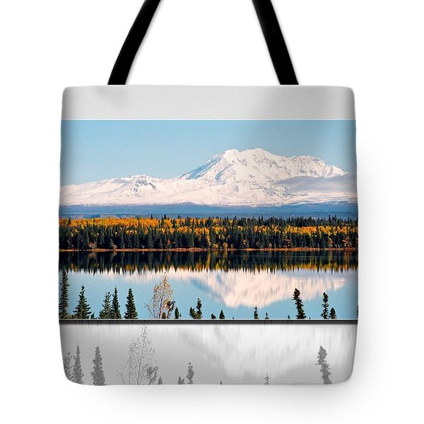 Tote Bag featuring the photograph Mt. Drum - Alaska by Juergen Weiss
