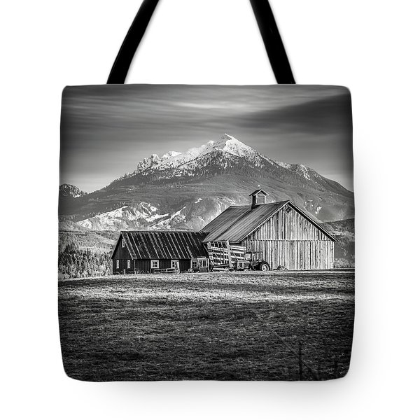 Mt Pilchuck Tote Bag by Tony Locke