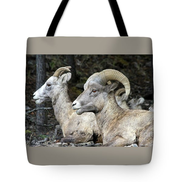 Mt Sheep  Tote Bag