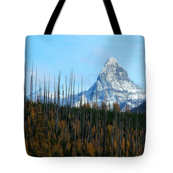 Mt St Nicolas After The Fire Tote Bag