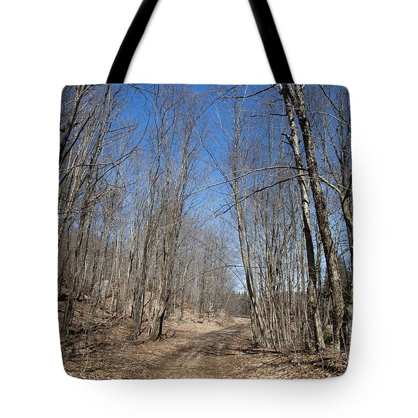 Tote Bag featuring the photograph Mud Season In The Adirondacks by David Patterson