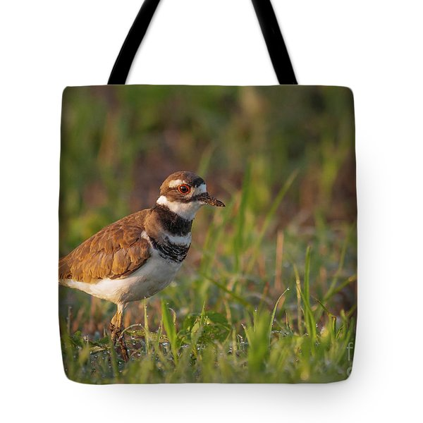 Muddy Killdeer Tote Bag
