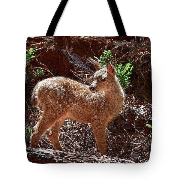 Muir Woods Fawn Tote Bag