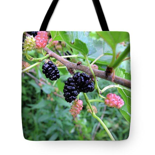 Mulberries Tote Bag by Scott Kingery