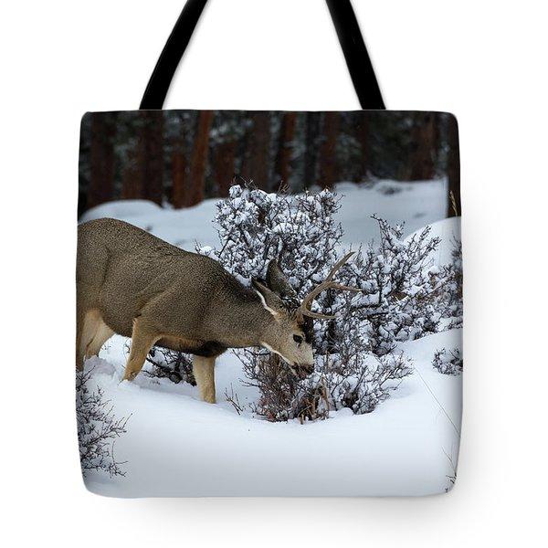 Mule Deer - 9130 Tote Bag