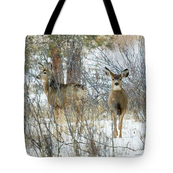 Mule Deer Does In Snow Tote Bag