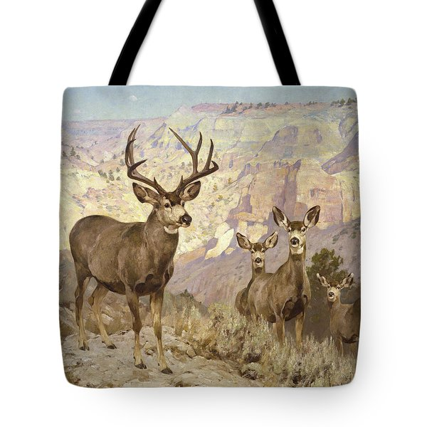 Mule Deer In The Badlands, Dawson County, Montana Tote Bag