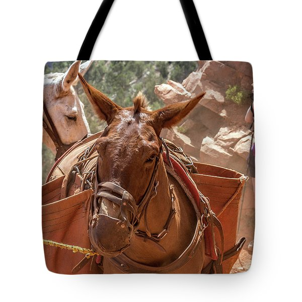 Mule Train On The South Kaibab Trail Tote Bag