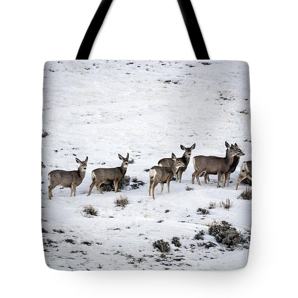 Muledeer Gather On A Snowy Hillside In Sweetwater County In Wyoming Tote Bag