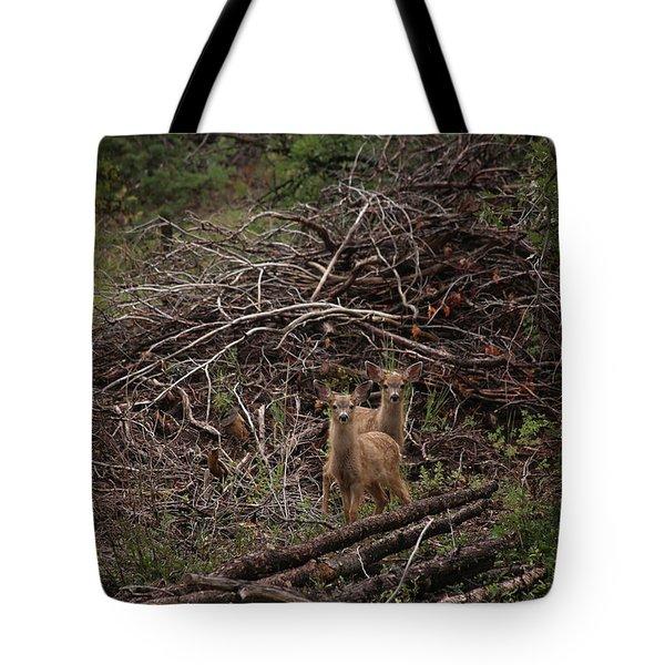 Muledeerfawns2 Tote Bag