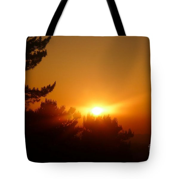 Mulholland  Tote Bag by Nora Boghossian