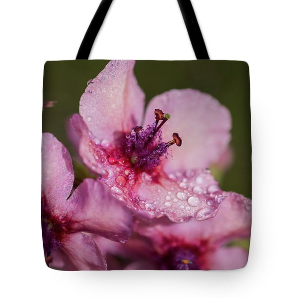 Mullein In The Mist Tote Bag