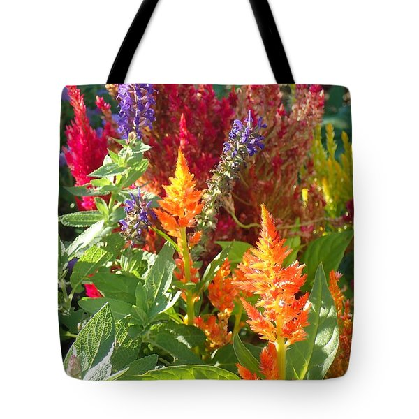 Multi-color Energy Tote Bag