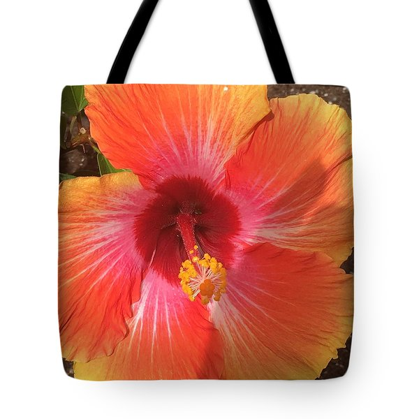 Multi-colored Beauty Tote Bag