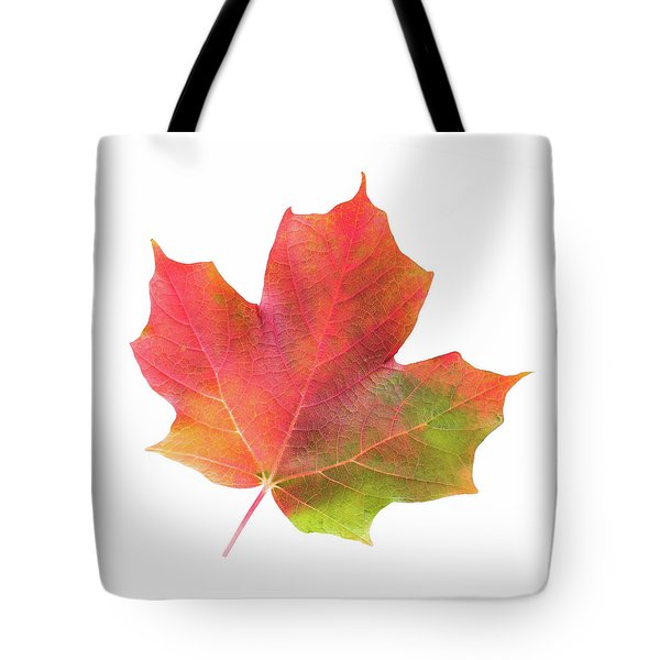Multicolored Maple Leaf Tote Bag by Jim Hughes