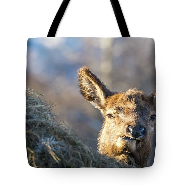 Munching Tote Bag