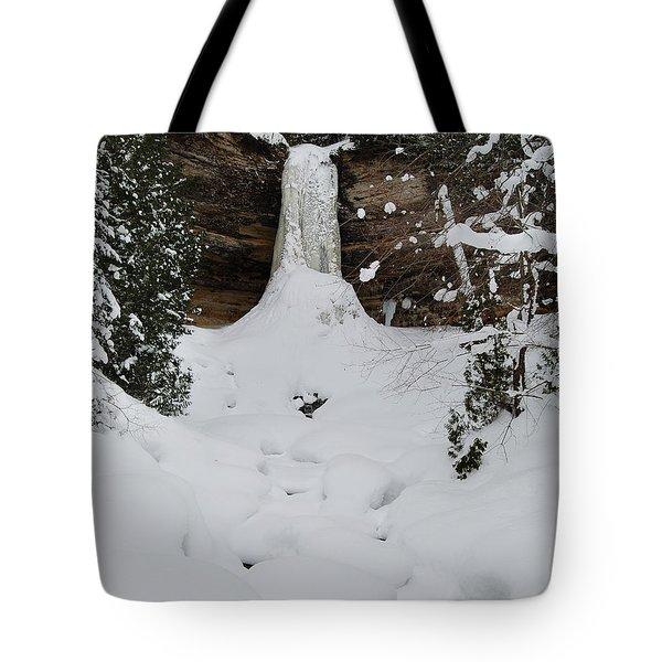 Munising Frozen Tote Bag by Michael Peychich