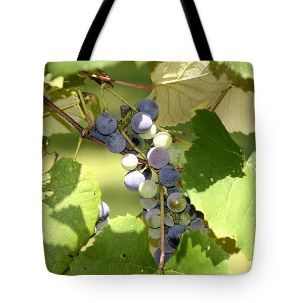Muscadine Grapes Tote Bag
