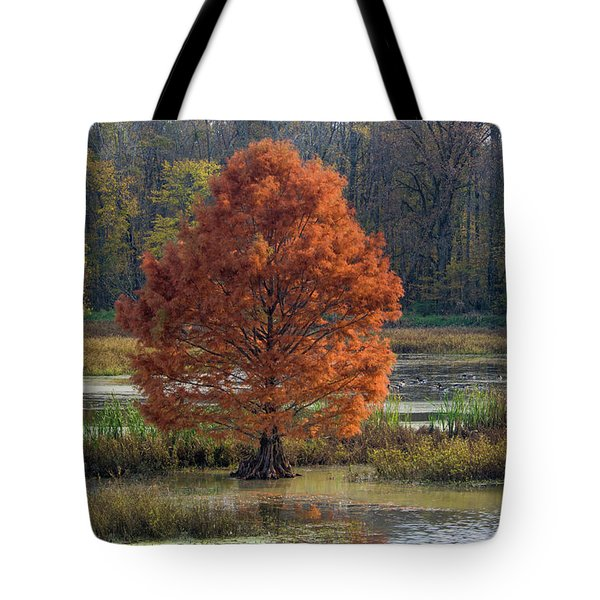 Tote Bag featuring the photograph Muscatatuck - D009967 by Daniel Dempster