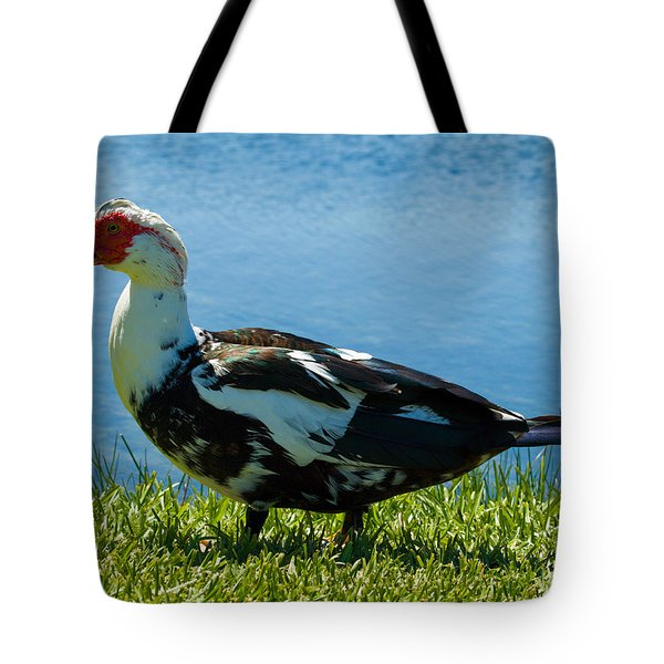 Muscovy Ducks Are Butt-ugly Tote Bag by Allan  Hughes