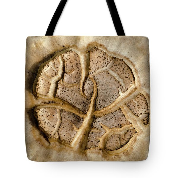 Tote Bag featuring the photograph Mushroom Art by Jeff Phillippi