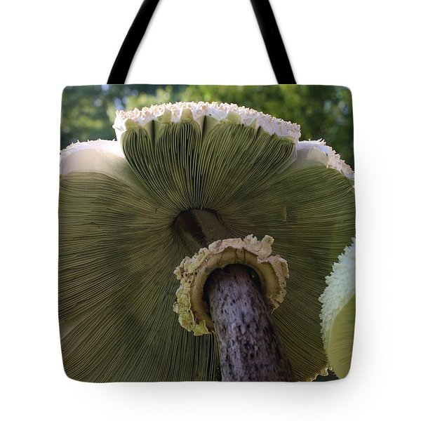 Tote Bag featuring the photograph Mushroom Down Under  by Bruce Bley