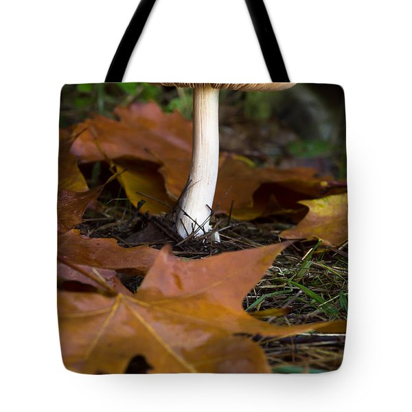 Mushroom, Tote Bag by Edgar Laureano