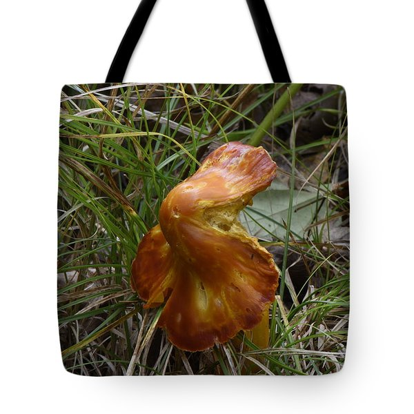 Tote Bag featuring the photograph Mushroom In Grass by Paul Freidlund