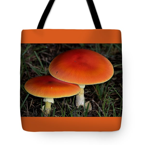 Tote Bag featuring the photograph Mushroom Love by Sheila Brown
