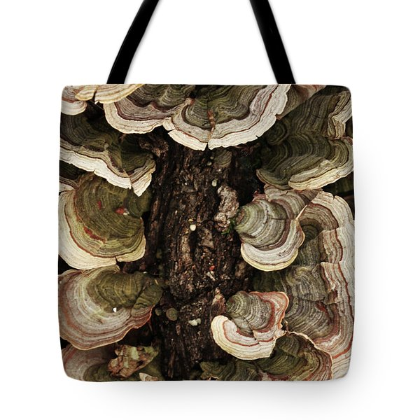 Tote Bag featuring the photograph Mushroom Shells By The Lake Shore by Kim Henderson