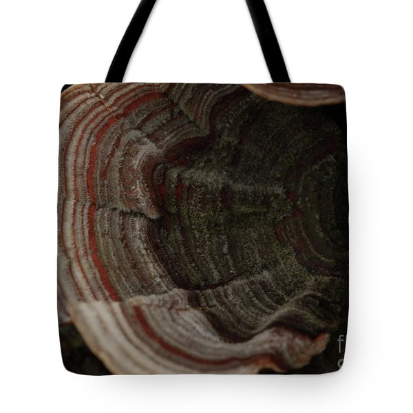 Tote Bag featuring the photograph Mushroom Shells by Kim Henderson
