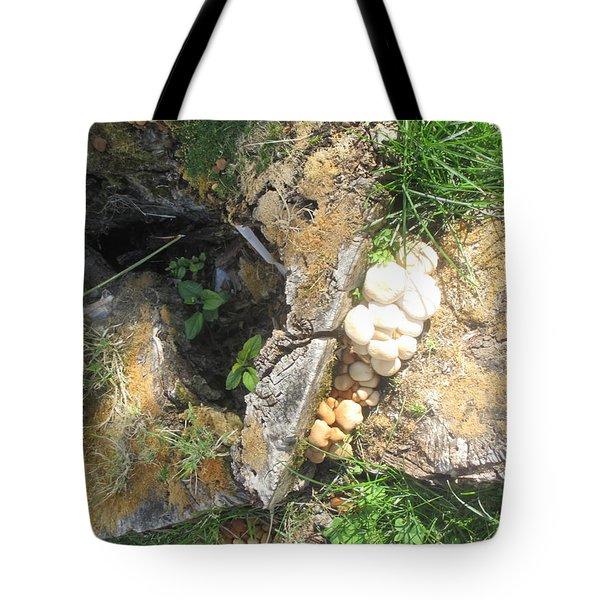 Mushrooms And Trunk Tote Bag
