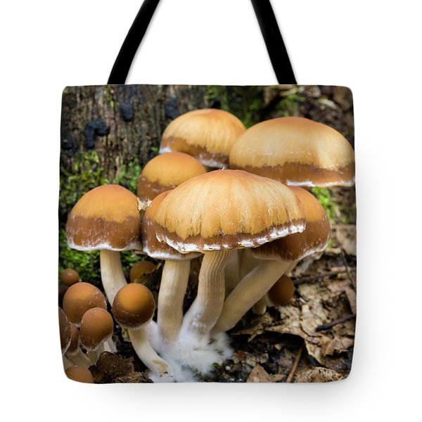 Tote Bag featuring the photograph Mushrooms - D009959 by Daniel Dempster