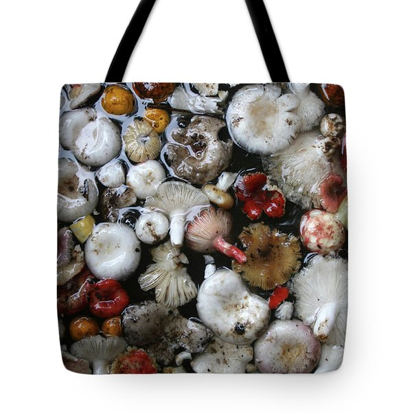 Tote Bag featuring the painting Mushrooms In Thailand by Jeremy Holton