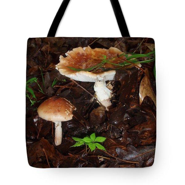 Mushrooms Rising Tote Bag