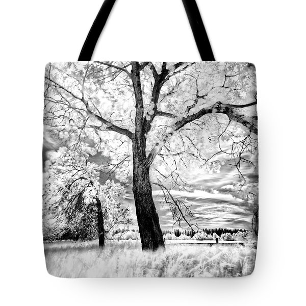 Tote Bag featuring the photograph Music Moves The Soul by Dan Jurak