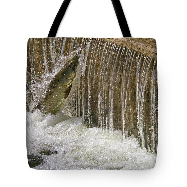 Muskie 2 - Lake Wingra - Madison - Wisconsin Tote Bag