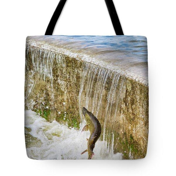 Muskie - Lake Wingra - Madison - Wisconsin Tote Bag
