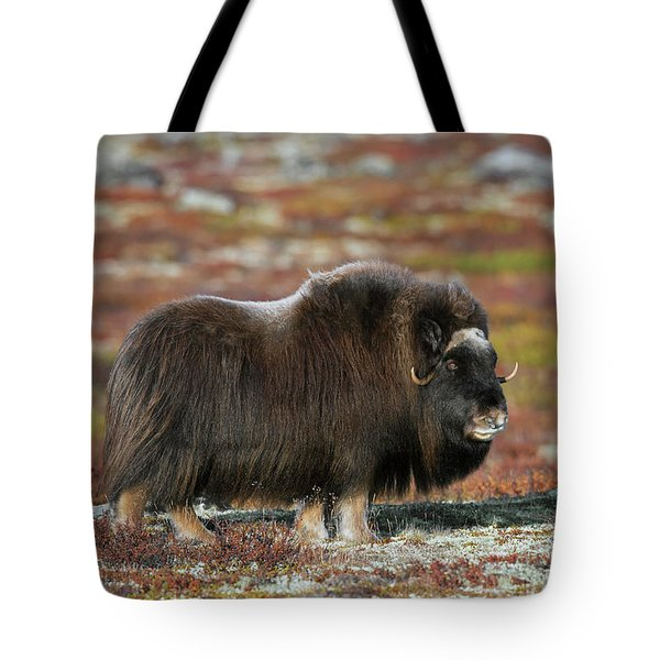 Muskox Tote Bag