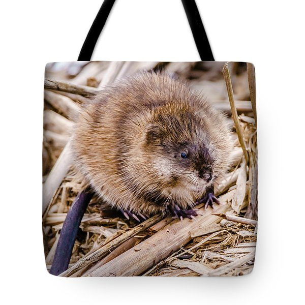 Muskrat Ball Tote Bag