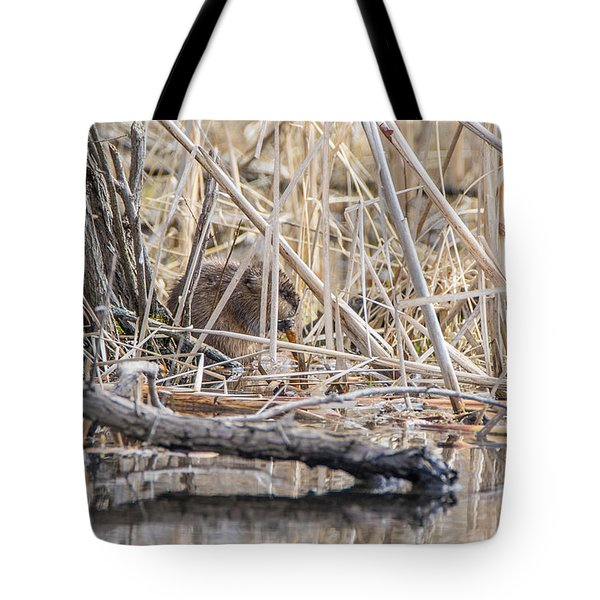 Muskrat Eating A Fish Tote Bag