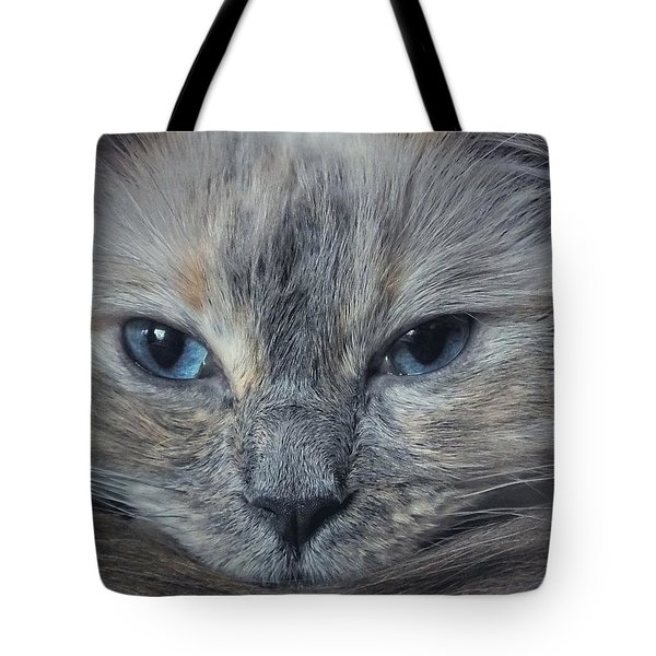 Mustachioed Cat Tote Bag by Karen Stahlros