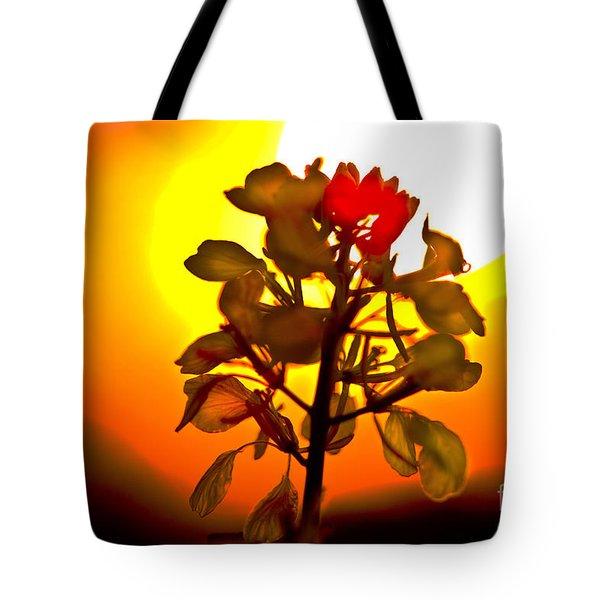 Mustard Sunset Tote Bag