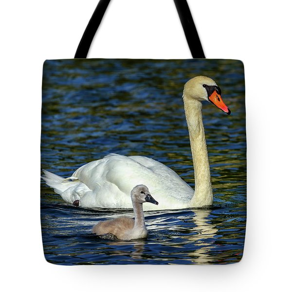 Mute Swan, Cygnus Olor, Mother And Baby Tote Bag by Elenarts - Elena Duvernay photo