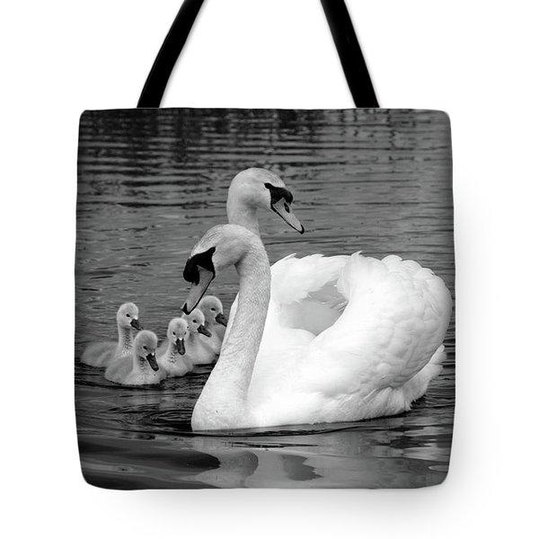 Mute Swans Tote Bag