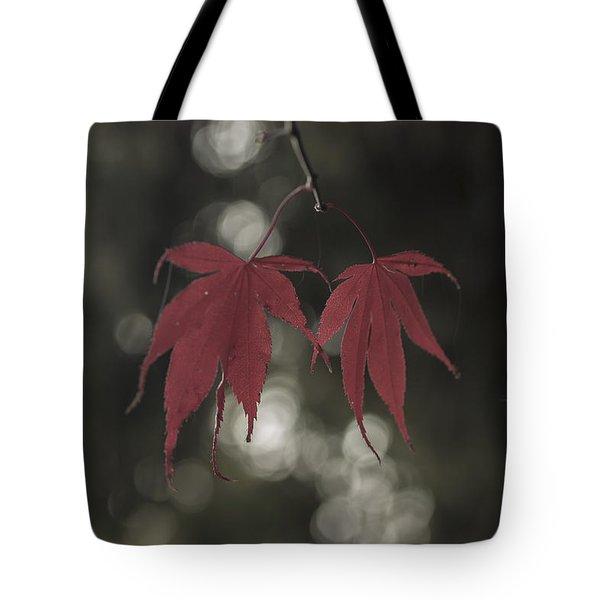 Muted Fall Colrs Tote Bag