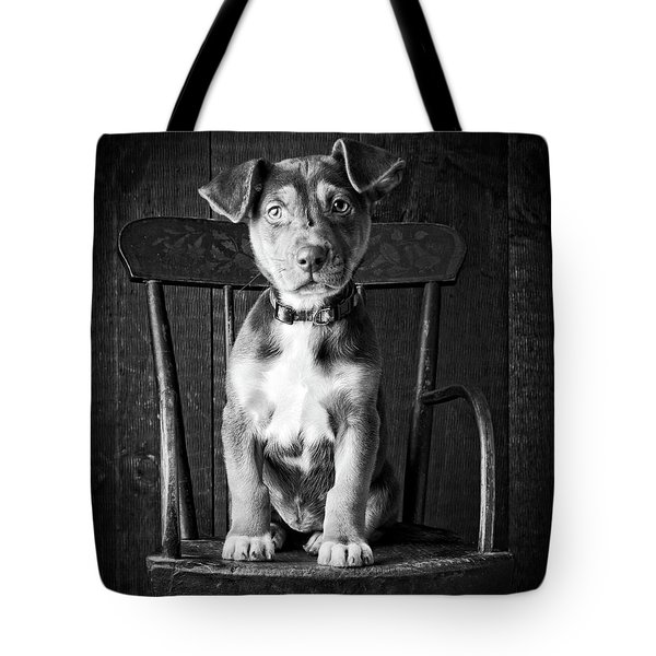 Tote Bag featuring the photograph Mutt Black And White by Edward Fielding