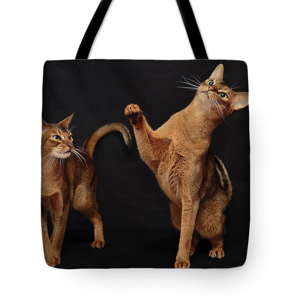 Tote Bag featuring the photograph My Abys by Gary Hall