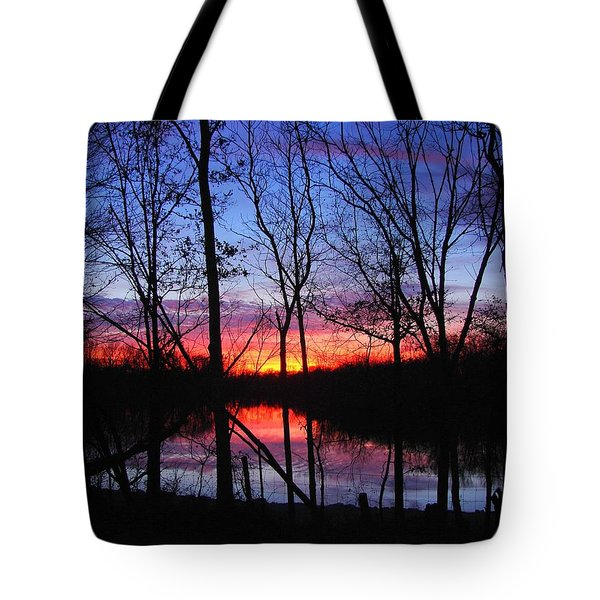 Tote Bag featuring the photograph My Backyard by J R Seymour